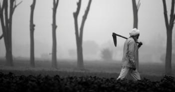farmers-700x3001